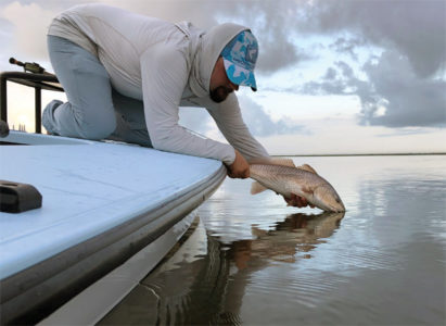 clay redfish 411x300 Catch and Release Tips